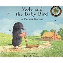 Mole and the baby bird / Marjorie Newman | Newman, Marjorie