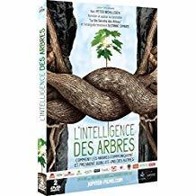 L' Intelligence des arbres / Julia Dordel, Guido Tolke, réal.   Dordel, Julia. Metteur en scène ou réalisateur