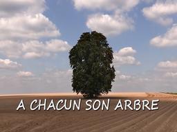 À chacun son arbre / François Maillart, réal. et scénario   Maillart, François. Monteur. Scénariste